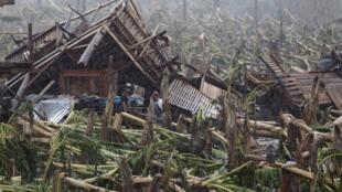 Une bananeraie détruite par le typhon Bopha dans la vallée du Compostela, dans le  sud des Philippines, le 7 décembre 2012.