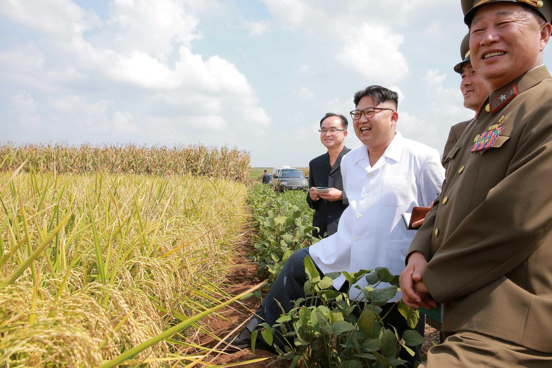Kim Jong-Un thăm một nông trại. Ảnh do KCNA công bố ngày 13/09/2017.