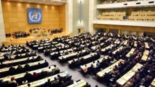 Vue générale de la salle où se tient l'assemblée générale annuelle de l'Organisation mondiale de la santé (OMS), réalisée, le 19 mai 2003 au palais des Nations à Genève. (Illustration)