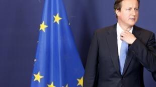 El primer ministro británico David Cameron.