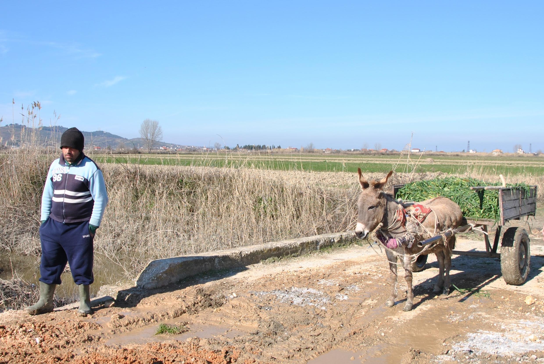 Seul un champ séparera les habitants de Verri de la future usine d'incinération des déchets.