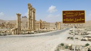 L'entrée du site archéologique de Palmyre, en Syrie, le 27 mars 2016, après que le régime ait repris les lieux aux forces du groupe EI.