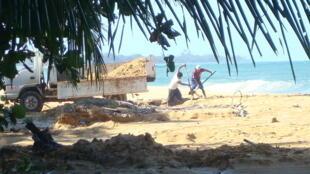 Hombres recolectando arena en Playa Bluff, Bocas del Toro, en Panamá.