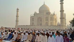 مسلمانان در هند