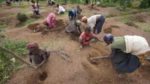 Le programme «food-for-work» dans le village d'Ukamo, dans la région de Wolayta au sud-ouest de l'Ethiopie.