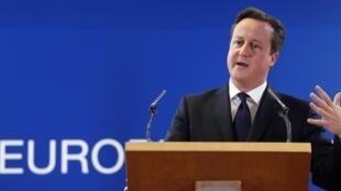 Le Premier ministre britannnique David Cameron, au sommet européen, à Bruxelles, le 20 décembre 2013.