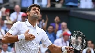 Top of the world: Novak Djokovic celebrates his victory over Roger Federer in the 2019 Wimbledon final