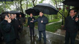 中國國家主席習近平2020年3月31日 在杭州 照片