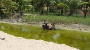 Crianças em Inhambane, sul de Moçambique