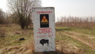 Власти Беларуси намерены «возродить» пострадавшие в результате чернобыльской аварии земли, «сделать их пригодными для проживания и выращивания продуктов питания».