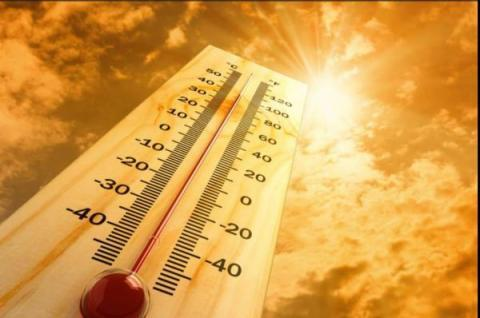 圖為炎熱爆表圖片