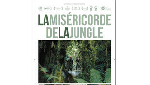 Affiche du film «La miséricorde de la jungle».