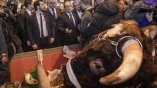 O presidente francês, François Hollande, chegou ao Salão da Agricultura antes das 7 horas da manhã, neste Sábado