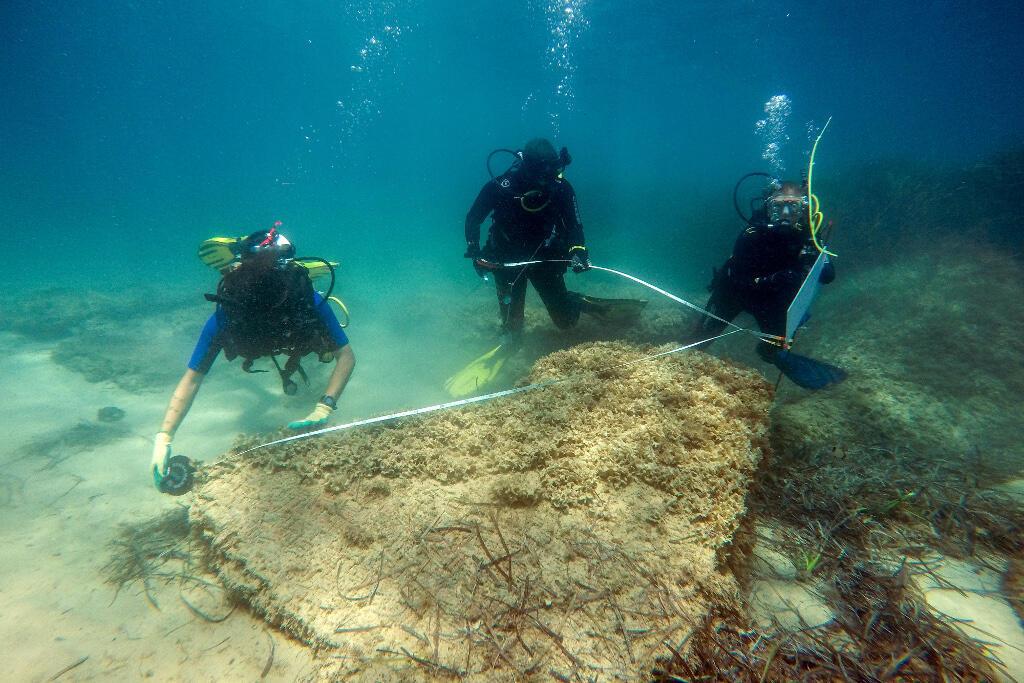 Une mission d'exploration archéologique sur le site de l'ancienne cité antique de Néapolis, en Tunisie.