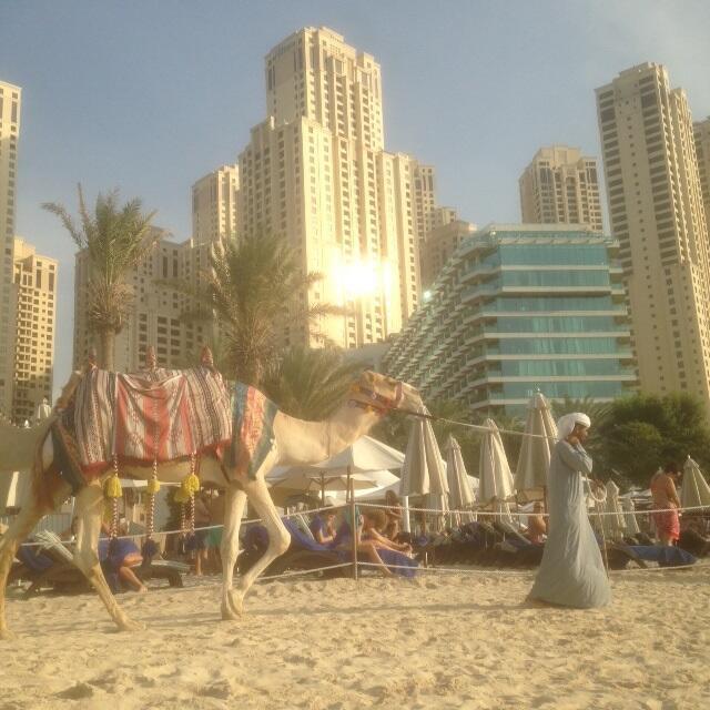 A Dubaï, les fêtes se multiplient afin d'attirer les touristes.
