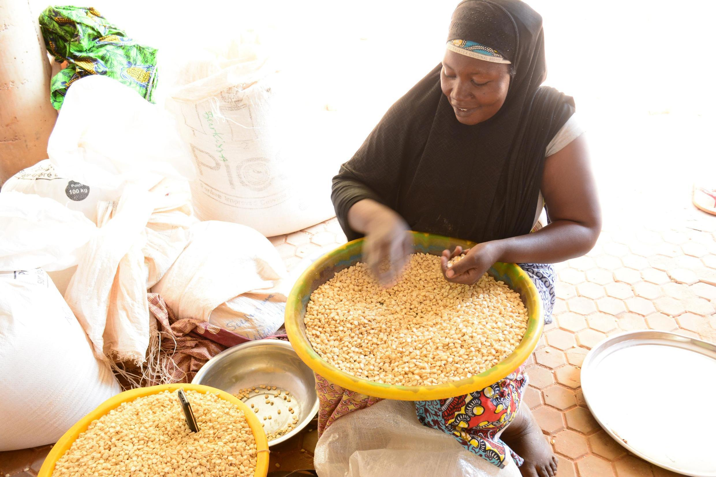 A Tanzanian female trader sorts high-yielding maize seeds designed to use less land and grow more crops
