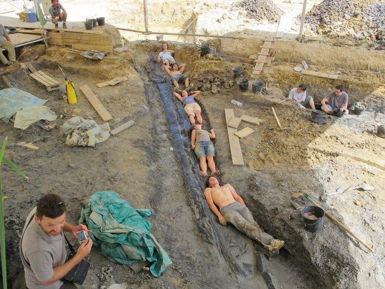 Tronco de conífera fosilizado de más de 10 metros de largo, en el yacimiento de Angeac-Charente.