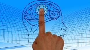 cérebro manipulação
