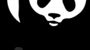 Logo da ONG WWF, Fundo Mundial para a Natureza, que critica gestão moçambicana dos recursos naturais