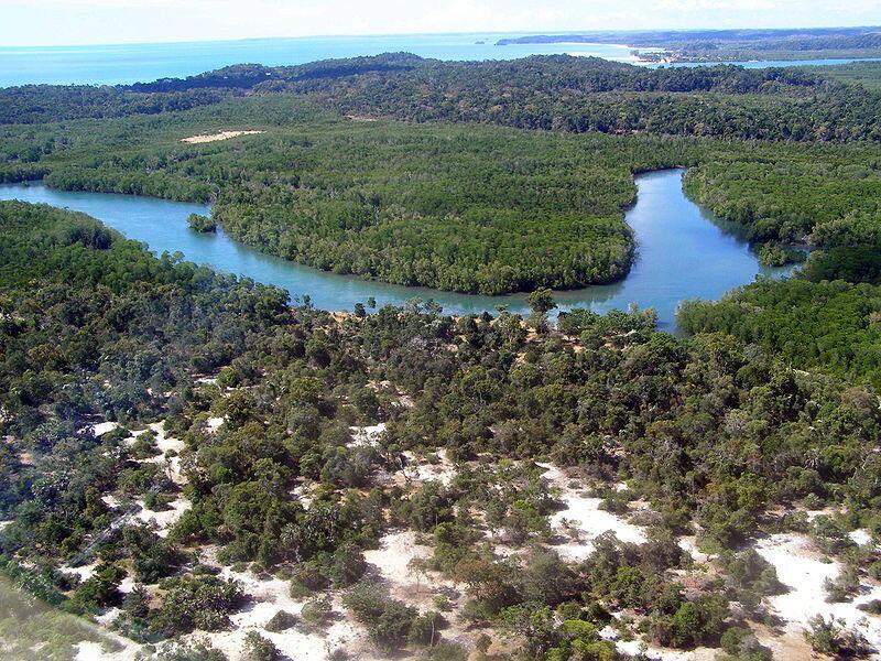 E cimtol WWWF, e nder duuɓi 15 ko ɓuri 600 ɓii-kulle e ɓii-leyɗe kese limaama.  WWF Madagaskar.