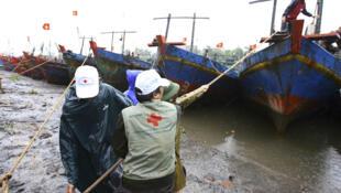 Các nhân viên Hồng thập tự và những người tình nguyện giúp người dân Thái Thụy, Thái Bình neo đậu tàu thuyền tránh bão Nesat, ngày 30/9/11.