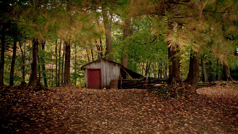 La cabane au fond des bois est un solide mythe américain qui a inspiré les plus beaux récits mais aussi les voyageurs du monde entier.