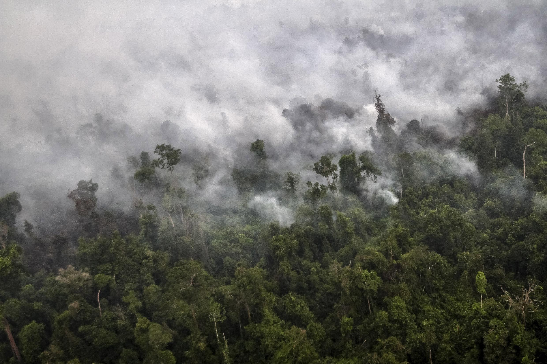 L'Indonésie est en proie à d'incontrôlables incendies, qui provoquent depuis des semaines des dégagements de fumées toxiques dans le ciel d'Asie du Sud-Est.