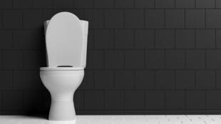Les troubles urinaires sont liés à des dysfonctionnements et à des infections de l'appareil urinaire.