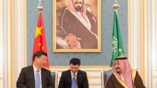 图为沙特国王萨尔曼会见中国国家主席习近平