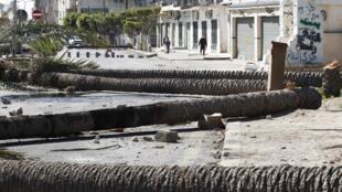 La ville de Tripoli est déserte. Des palmiers, utilisés par les manifestants anti-gouvernementaux comme barricade, jonchent le sol.