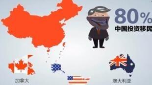 圖為網絡報導中國富豪移民國外Chinese rich immigrants 圖片