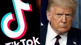 美國總統特朗普與抖音國際版TikTok標識示意圖