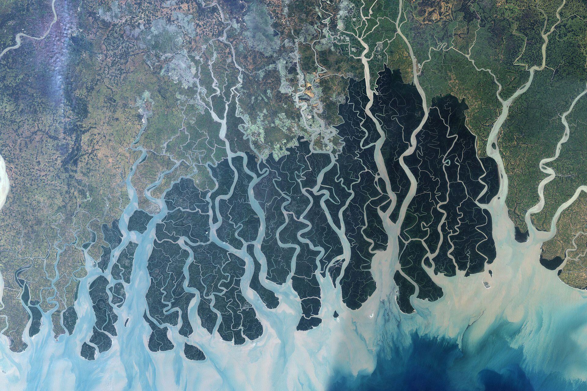 Image satellite des Sundarbans.