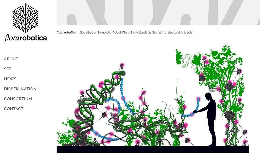 Capture d'écran du site Flora Robotica.