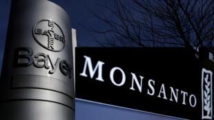 Après avoir acheté Monsanto, le géant allemand Bayer a annoncé la suppression de cette marque controversée.