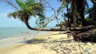 Guinée-Bissau - Tourisme - Plage - GettyImages-900799666