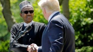 Shugaban Amurka Donald Trump tare da  Muhammadu Buhari na Najeriya