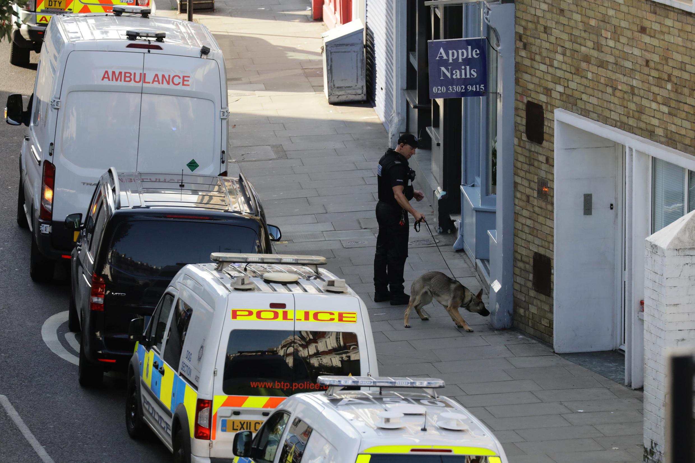 Машины полиции и скорой помомщи у станции Парсонс Грин в Лондоне после взрыва, 15 сентября 2017 года.