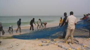 Pêche au filet, plage de Nouakchott