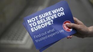 Vận động ủng hộ Anh quốc ở lại với Liên Hiệp Châu Âu.
