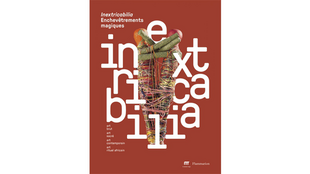 L'exposition «Inextricabilia. Enchêvtrements magiques» dure jusuq'au 17 septembre 2017 à la Maison rouge.