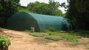 L'ombrière de la ferme sert à protéger les jeunes plants contre le soleil.