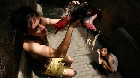 """Một cảnh trong phim """"Đập cánh giữa không trung"""" của đạo diễn Nguyễn Hoàng Điệp (DR)"""