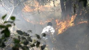 Lutte contre un incendie de forêt au Chili, ce 3 janvier 2012.
