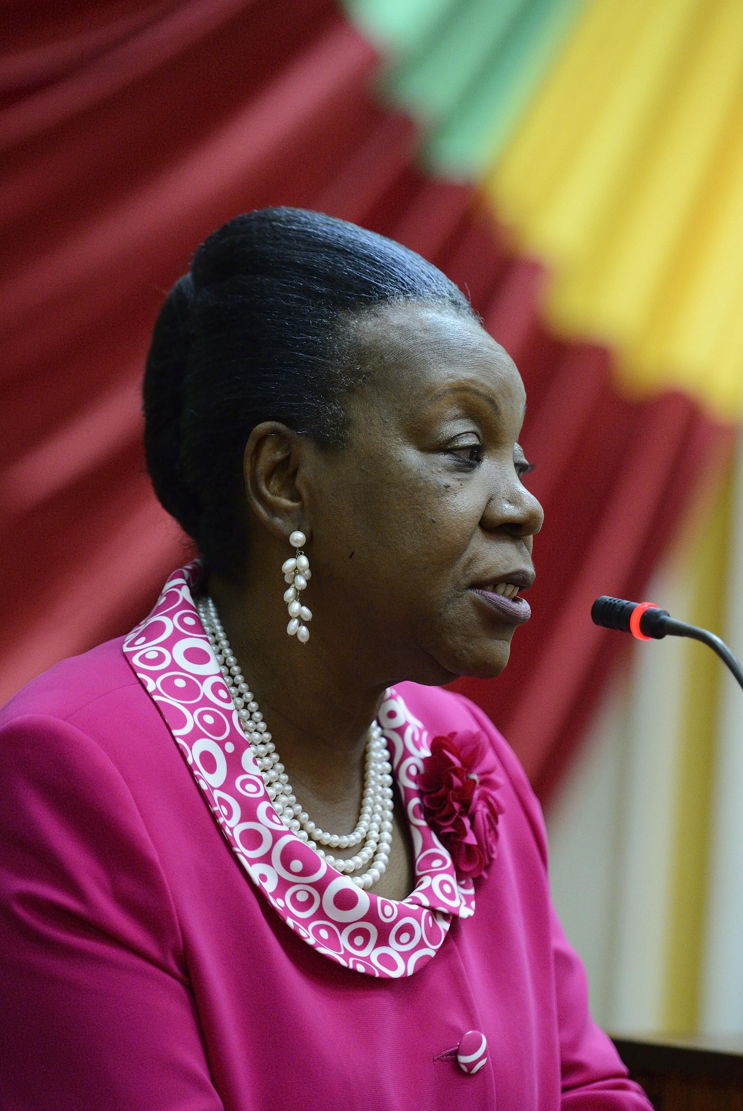 La présidente Catherine Samba-Panza s'adresse aux membres du Conseil national de transition, à Bangui, le 20 janvier2014.