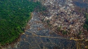 2020-09-21 brazil amazon deforestation environment forest