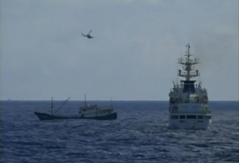 Pour les ONG environnementales, il faut limiter la pêche intensive de thon.