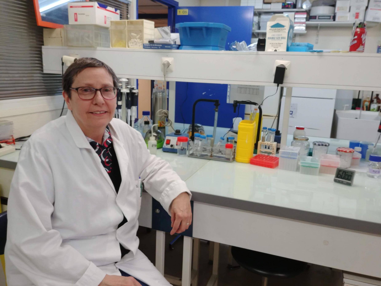 A pesquisadora Alicia Torriglia em seu laboratorio na Faculdade de Medicina de Paris