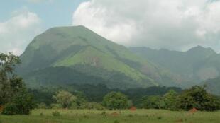 Le site des Monts Nimba, en Guinée, est classé réserve naturelle intégrale et patrimoine mondial de l'UNESCO.