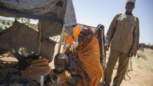 soudan darfour camp déplacés chedad